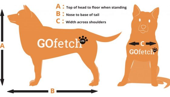 GoFetch-Measure-Chart